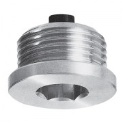 Magnetic oil - drain plug with hex slot